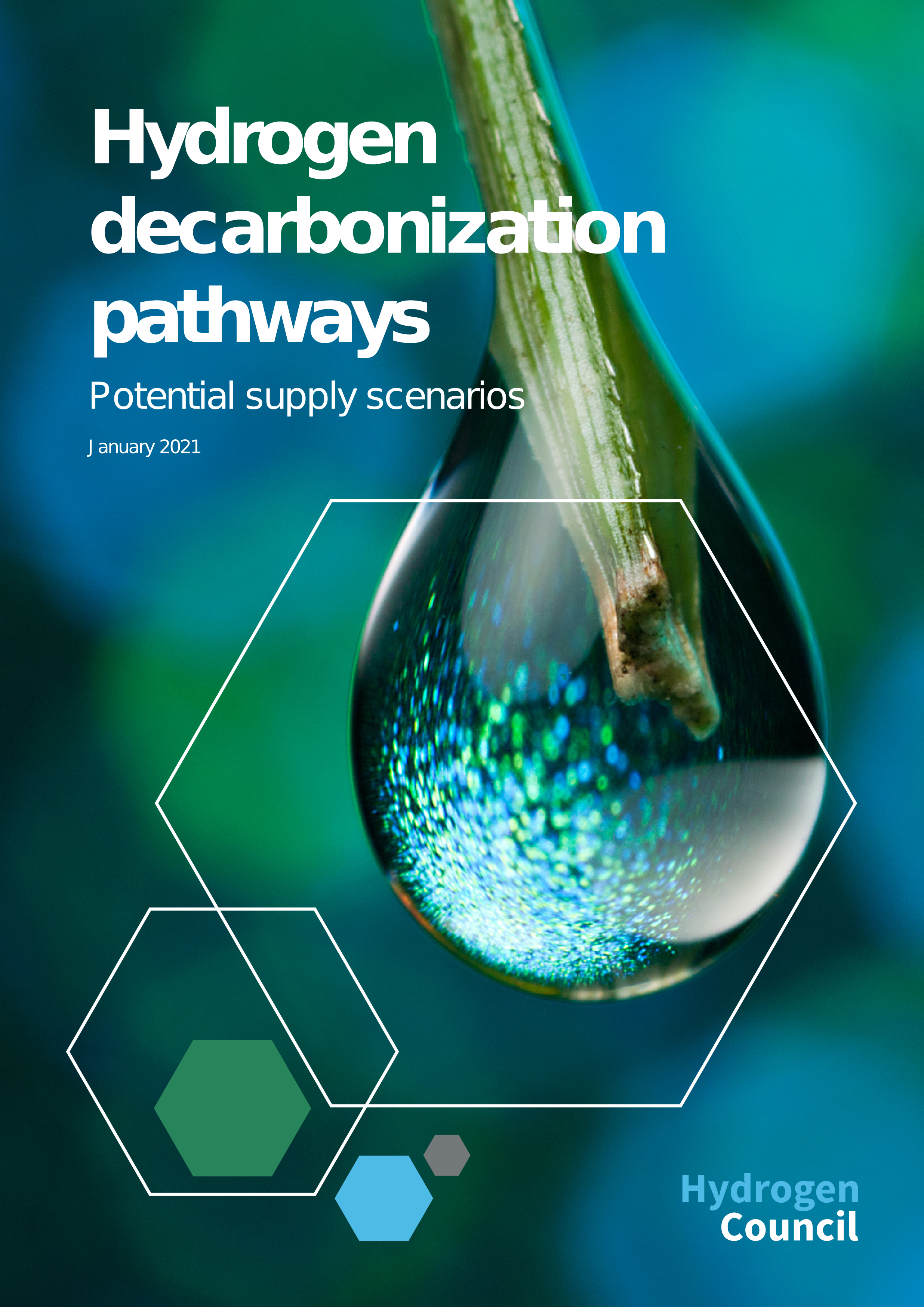 Hydrogen Decarbonization Pathways- Raport wykonany na zlecenie Hydrogen Council